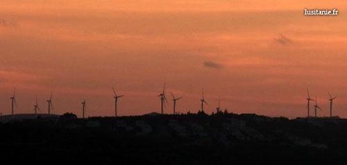 éoliennes sur l'horizon