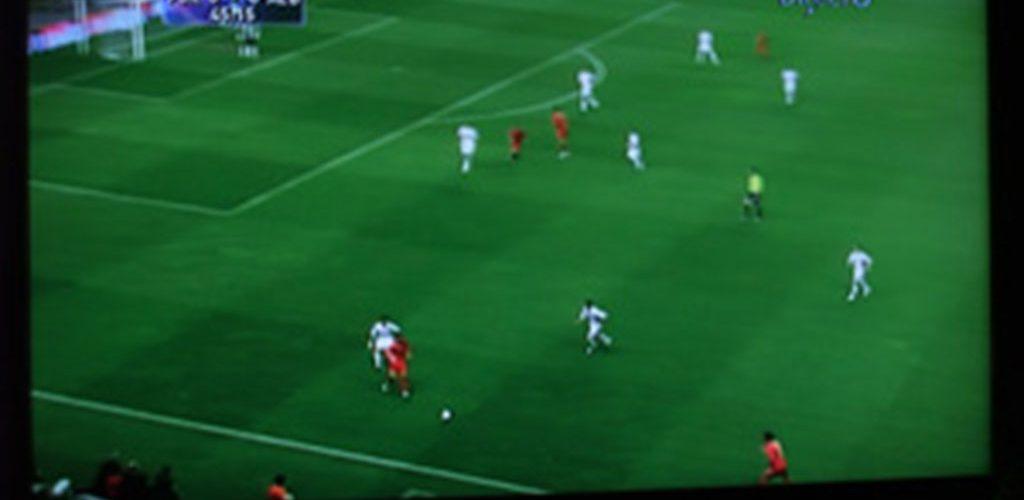 J'ai vu le match Portugal Albanie, qualifs du mondial 2010...