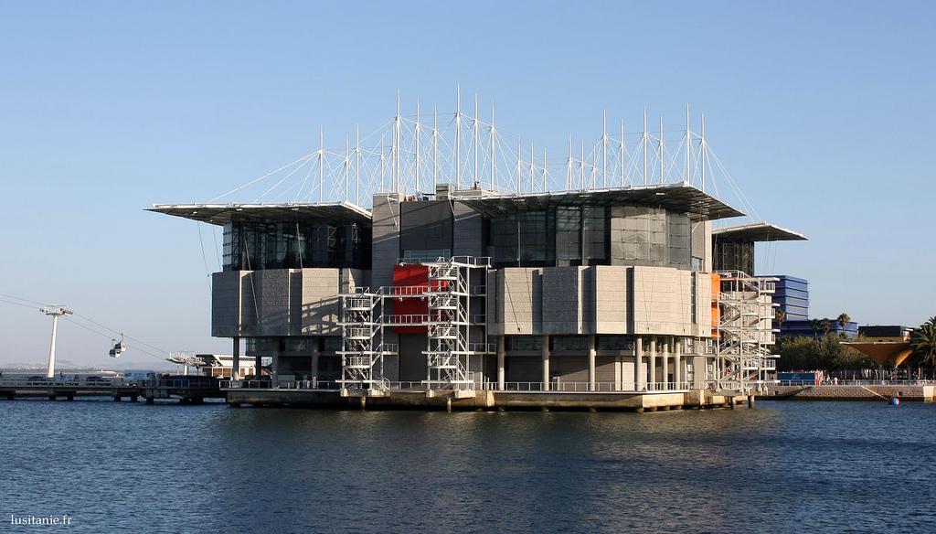 Oceanário : Oceanarium de Lisbonne, plus bel Aquarium d'Europe