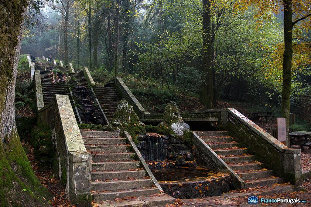 L'escalier monumental de la Fontaine Froide, Fonte Fria