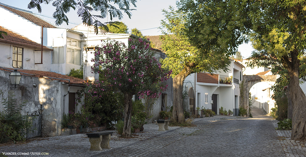 Des maisons donnant sur une petite route pavée, ressemblant presque plus à une cour intérieure qu'à un lieu de passage.