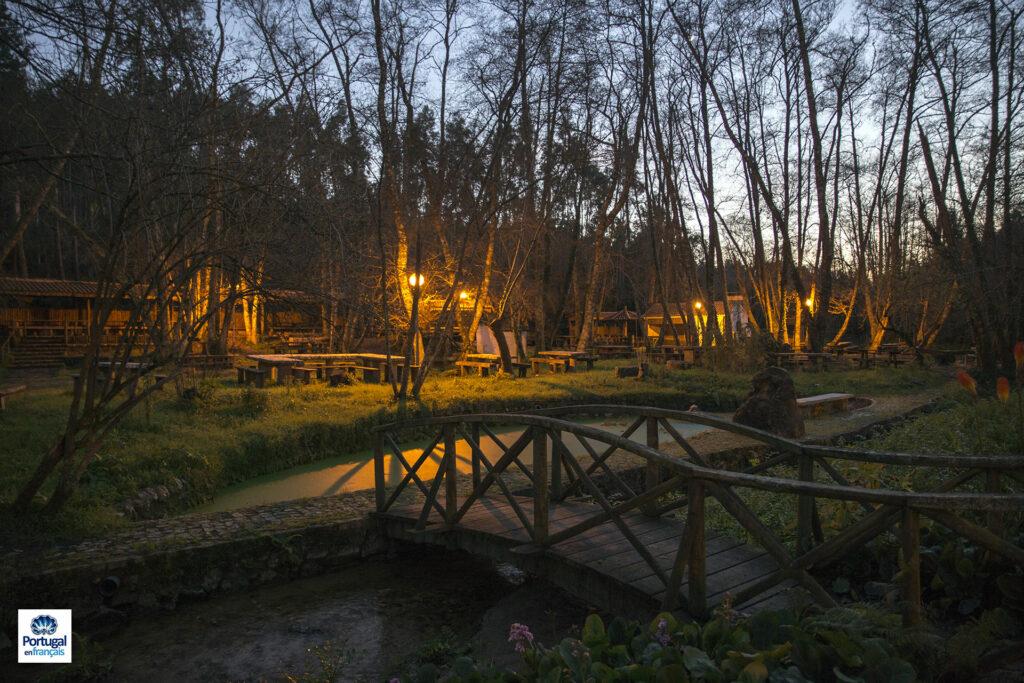 petit pont sur la rivière du parc